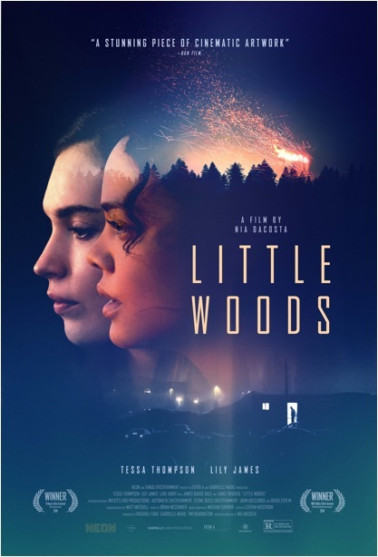 Little Woods (2019) HDRip XviD AC3 WoW