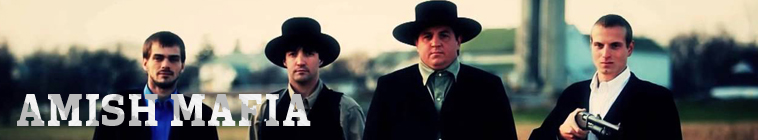 Amish Mafia S04E03 Love Your Enemies INTERNAL 480p x264-mSD