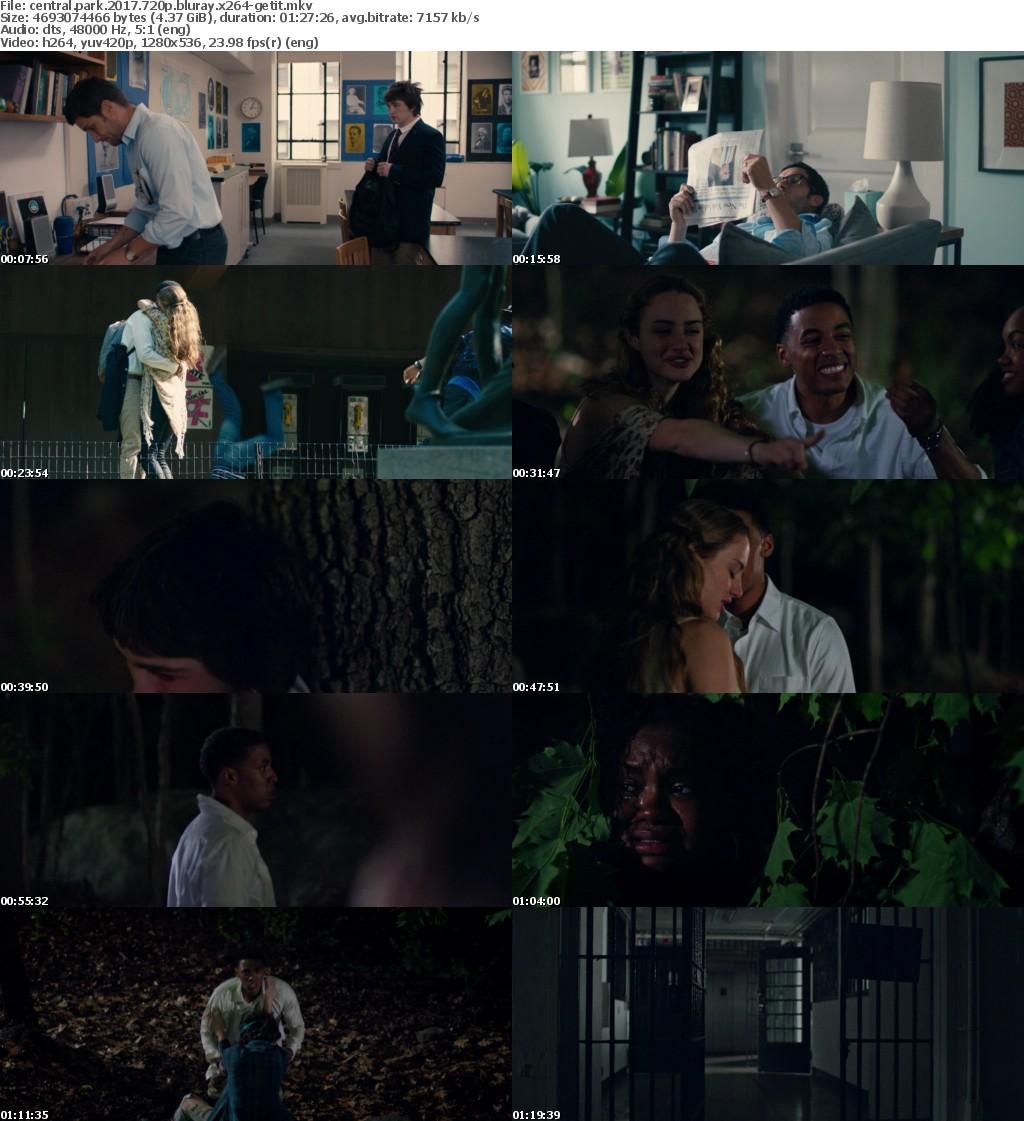 Central Park (2017) 720p BluRay x264-GETiT