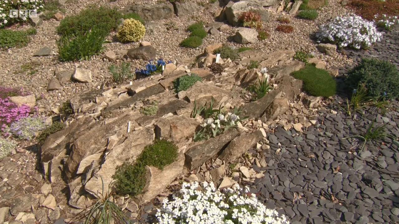 The Beechgrove Garden S41E03 Episode 3 720p iP WEB-DL AAC2 0 H 264-SOIL