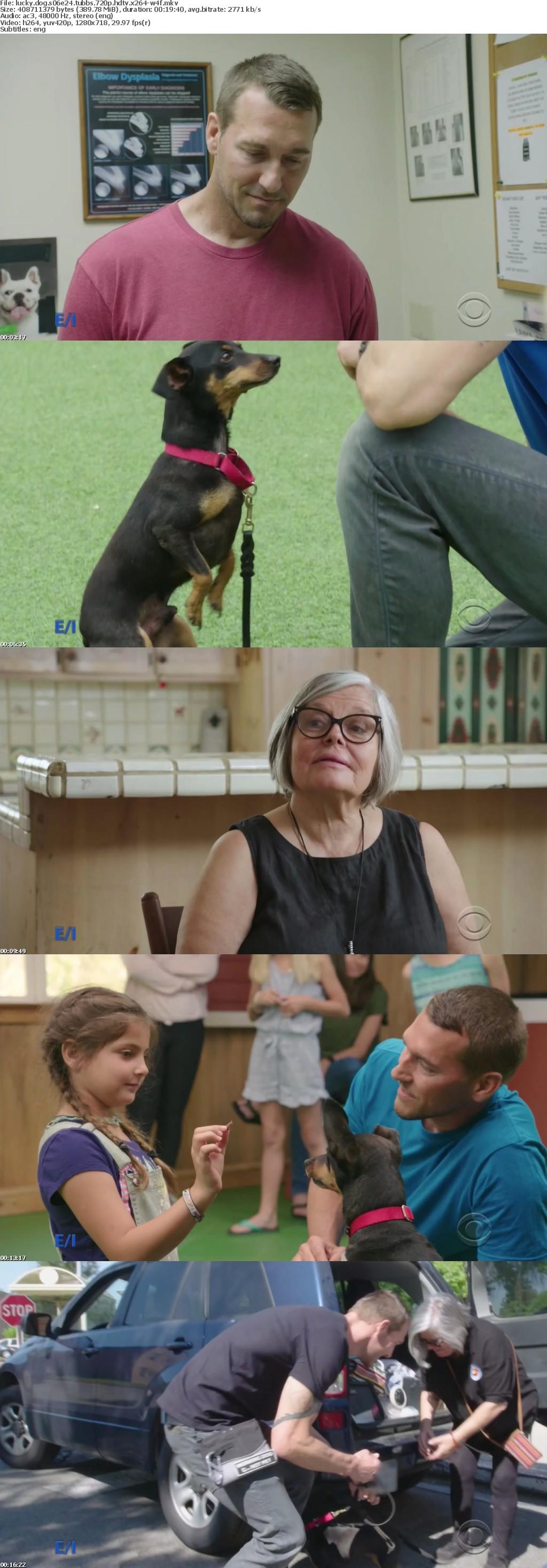 Lucky Dog S06E26 Tubbs 720p HDTV x264-W4F