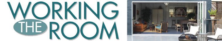 Working the Room S01E03 Man Cave to Family Lounge HDTV x264-CRiMSON