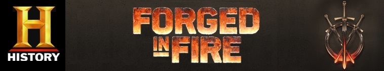 Forged in Fire S06E17 480p x264-mSD