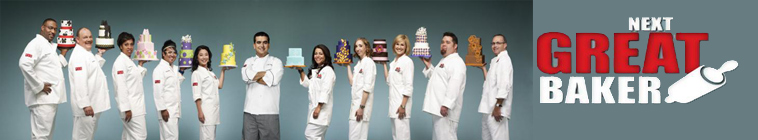 Cake Boss S01E08 Museum Mistakes and Mother Mary 720p WEB x264 GIMINI