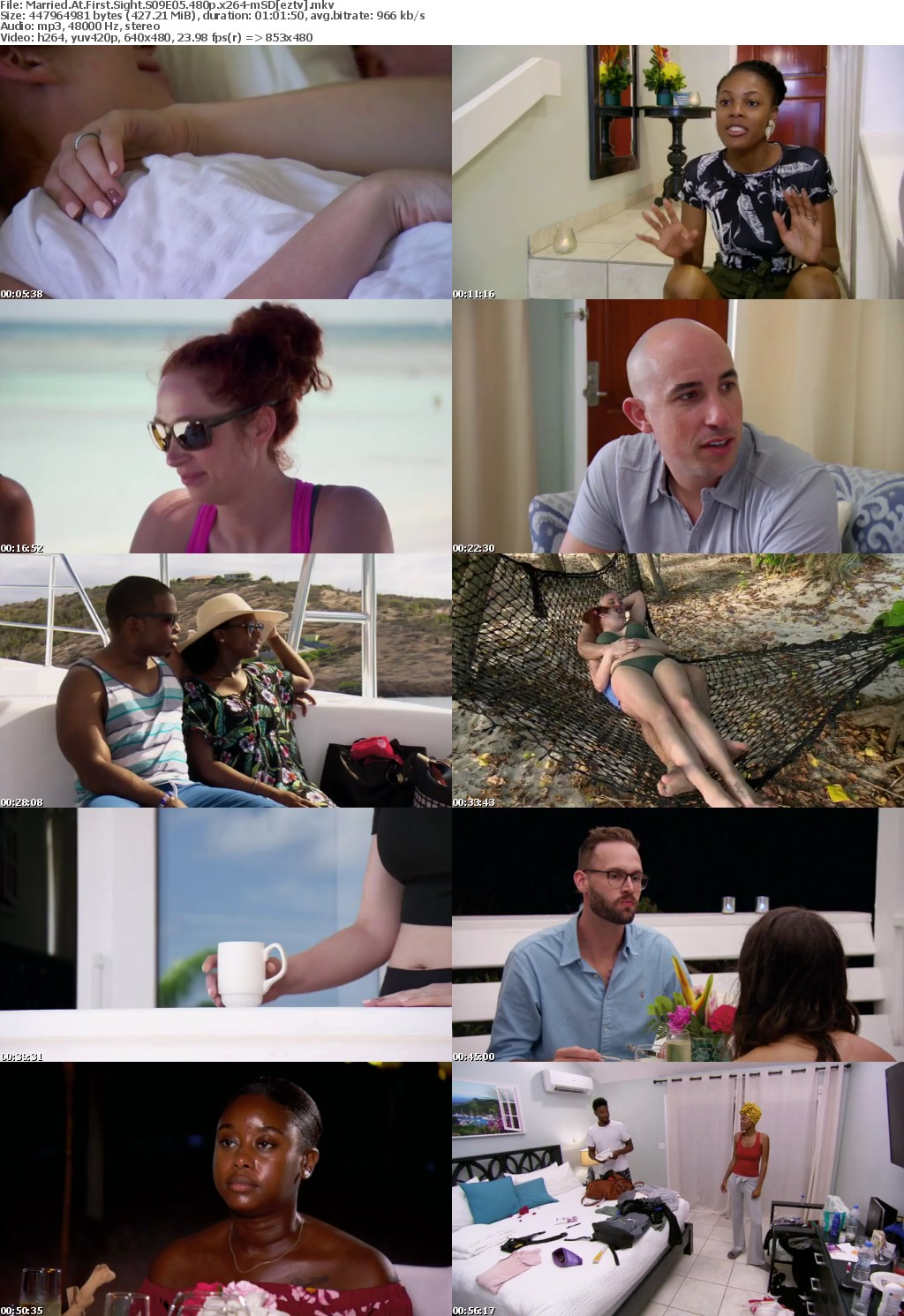 Married At First Sight S09E05 480p x264 mSD