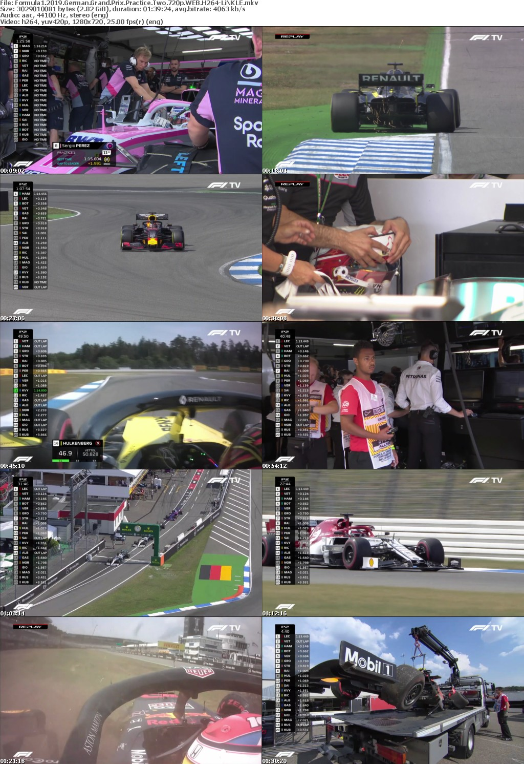 Formula1 2019 German Grand Prix Practice Two 720p WEB H264-LiNKLE