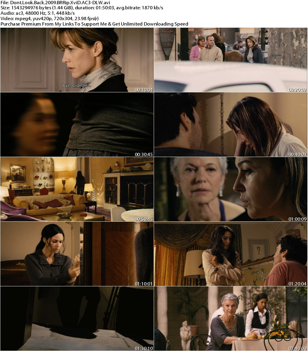 Dont Look Back (2009) BRRip XviD AC3-DLW