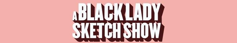 A Black Lady Sketch Show S01E01 iNTERNAL 480p x264 mSD