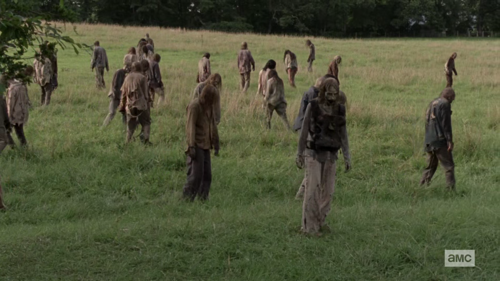 The Walking Dead S10E02 1080p HEVC x265-MeGusta