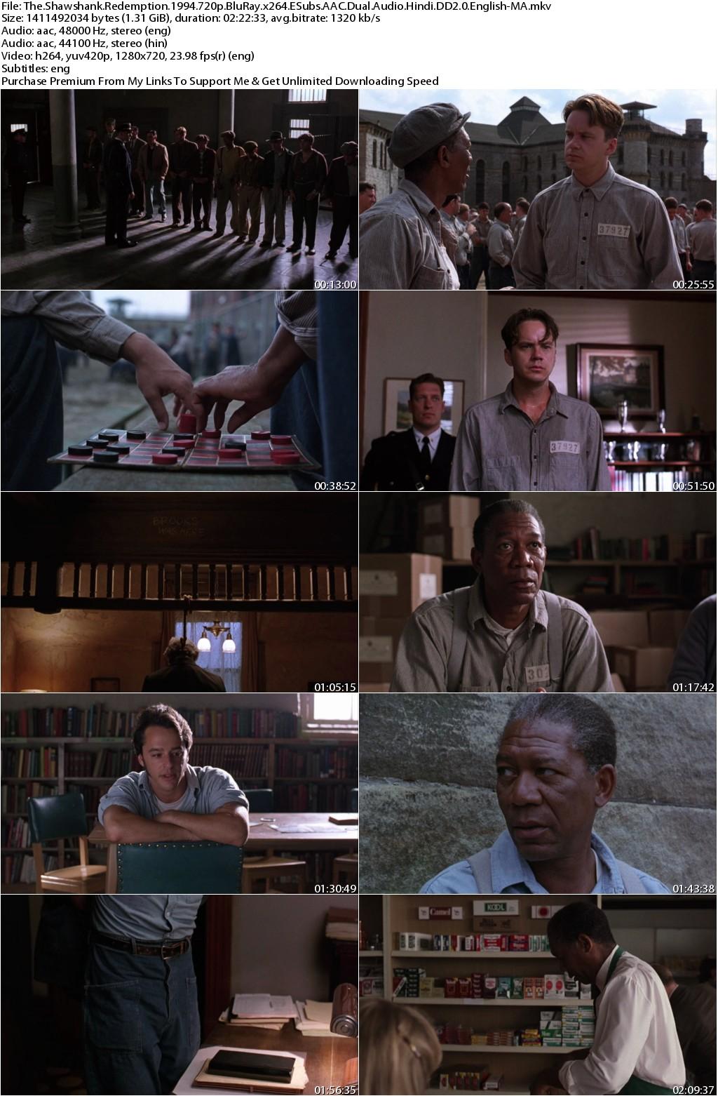 The Shawshank Redemption (1994) 720p BluRay x264 ESubs AAC Dual Audio Hindi DD2.0 English-MA