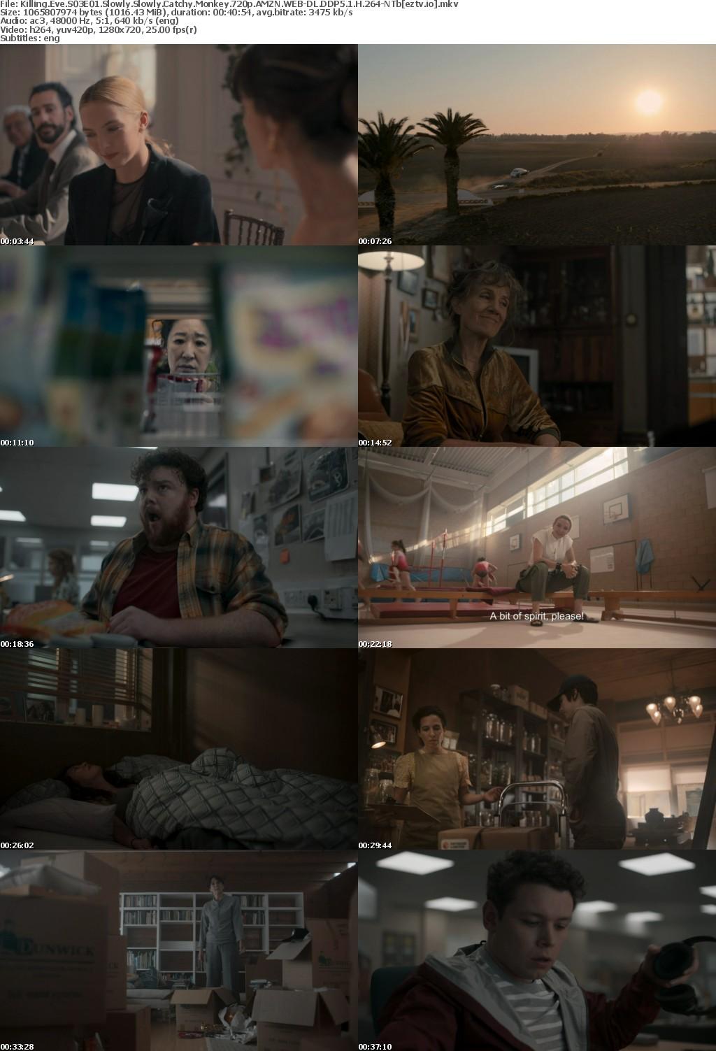 Killing Eve S03E01 Slowly Slowly Catchy Monkey 720p AMZN WEB-DL DDP5 1 H 264-NTb