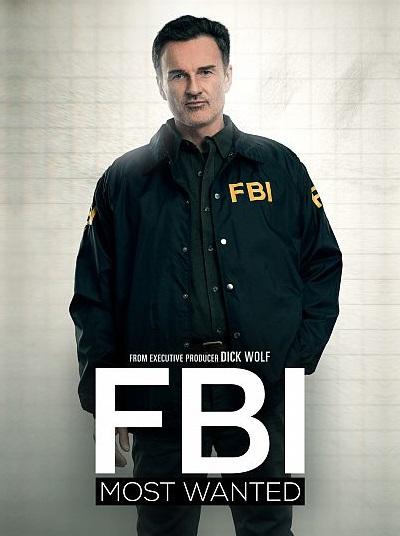 FBI Most Wanted S01E11 iNTERNAL 480p x264-mSD