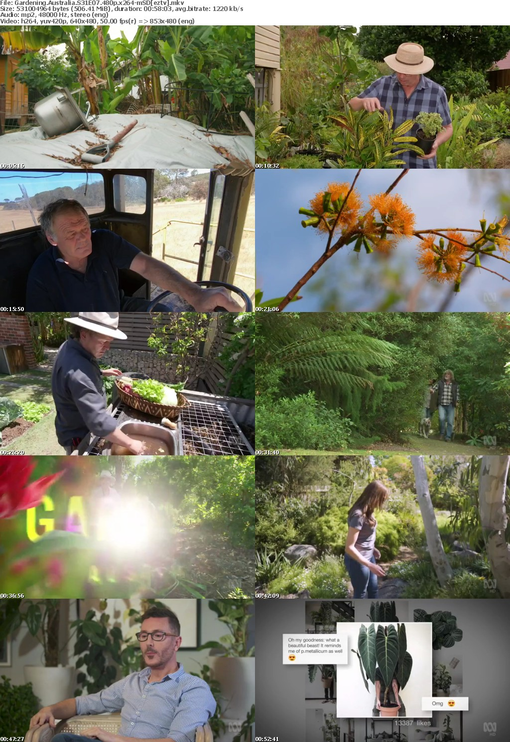 Gardening Australia S31E07 480p x264-mSD
