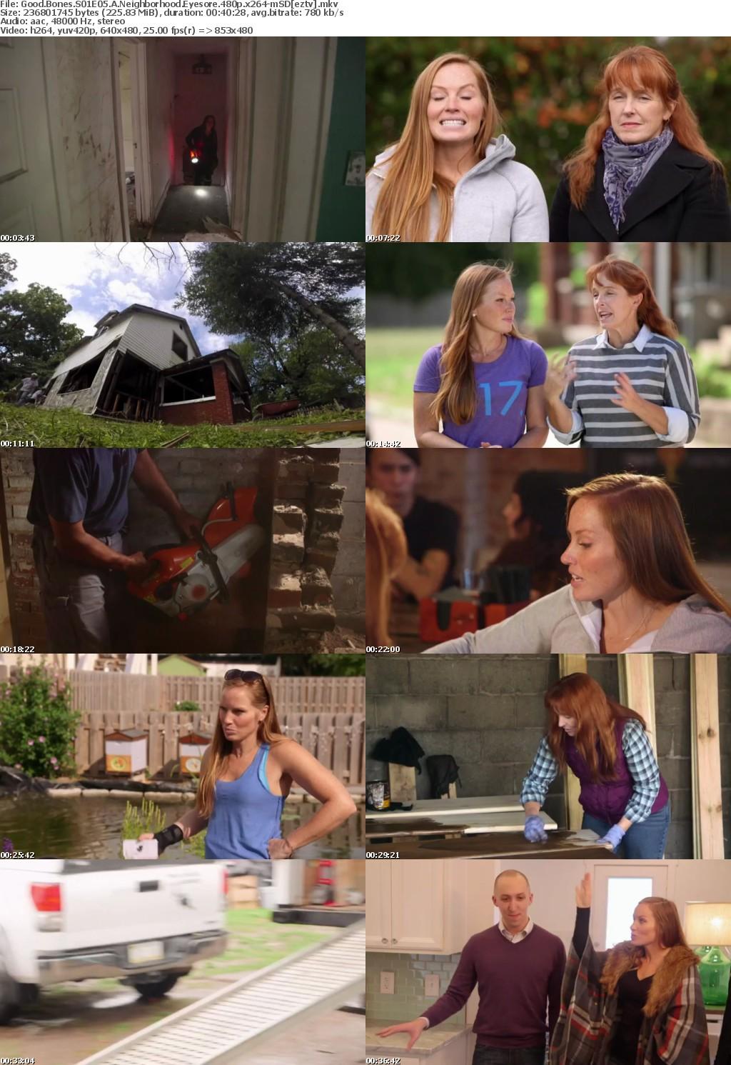 Good Bones S01E05 A Neighborhood Eyesore 480p x264-mSD