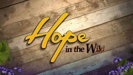 Hope in the Wild S02E21 From Orphaned Fawns to Freedom 720p WEB x264-LiGATE