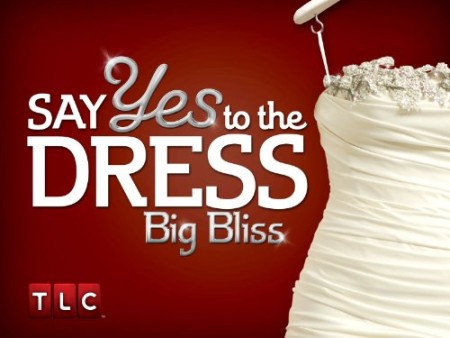 Say Yes to the Dress Big Bliss S02E09 The Dis-Comfort Zone 480p x264-mSD