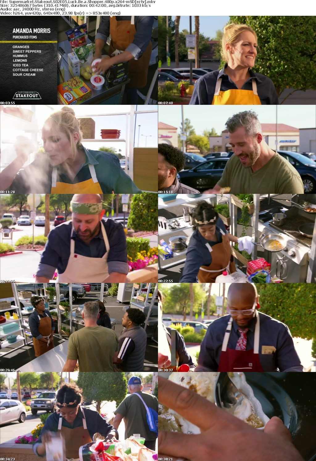 Supermarket Stakeout S02E05 Luck Be a Shopper 480p x264-mSD