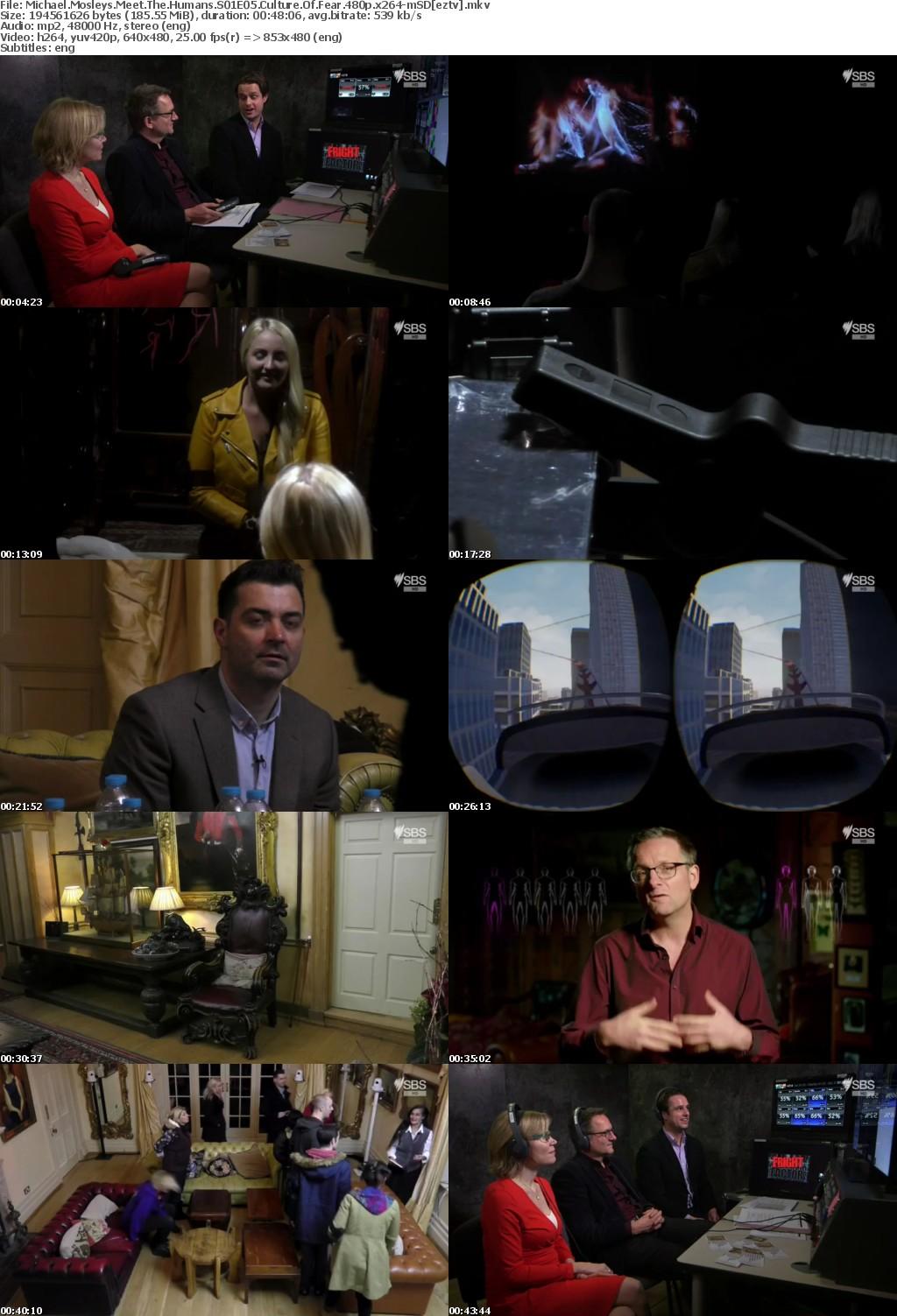 Michael Mosleys Meet The Humans S01E05 Culture Of Fear 480p x264-mSD