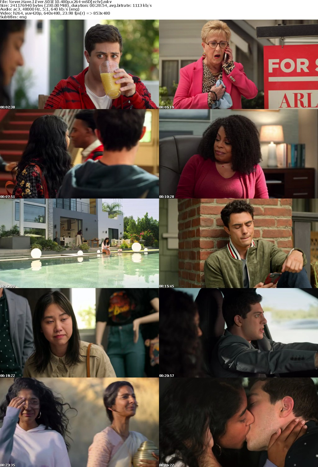 Never Have I Ever S01E10 480p x264-mSD