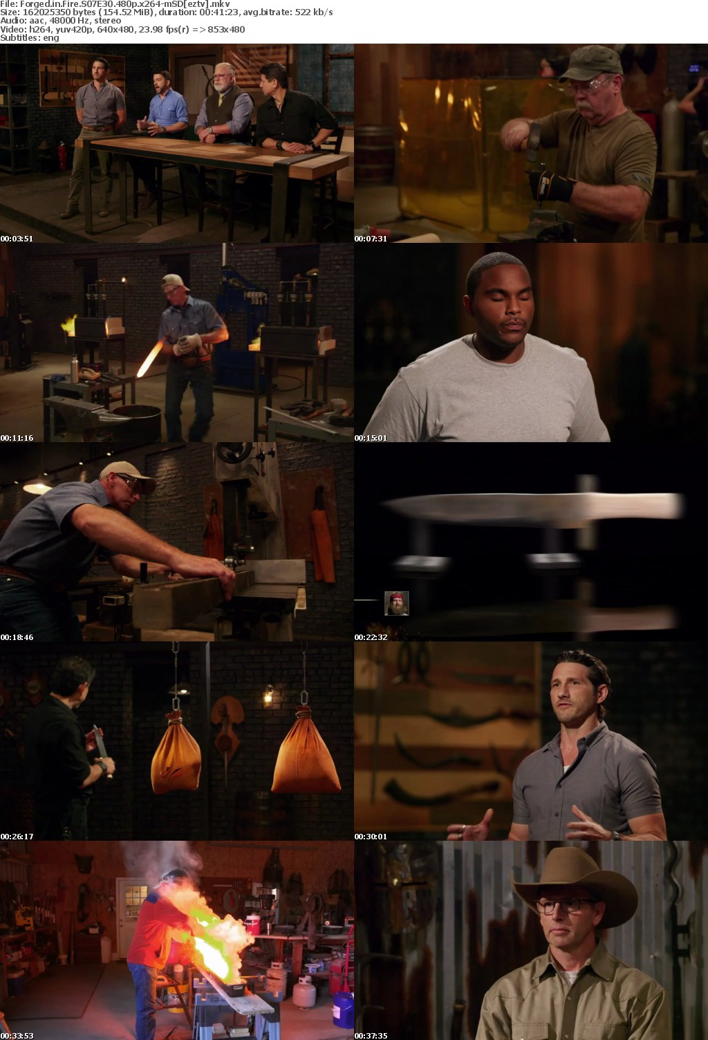 Forged in Fire S07E30 480p x264-mSD