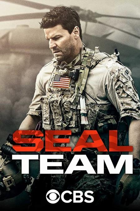 SEAL Team S03E20 480p x264-mSD