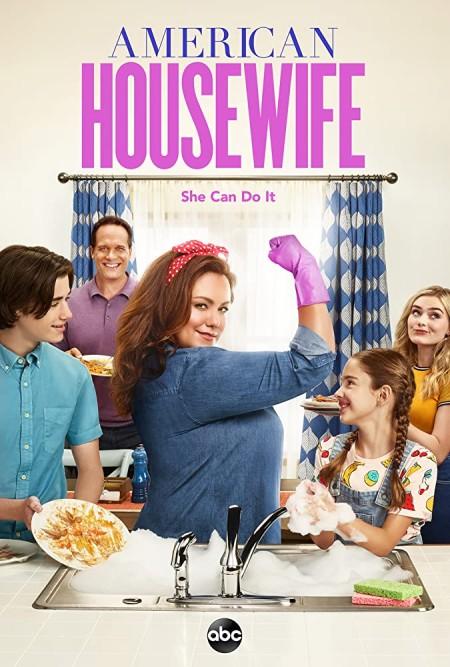 American Housewife S04E19 iNTERNAL 480p x264-mSD