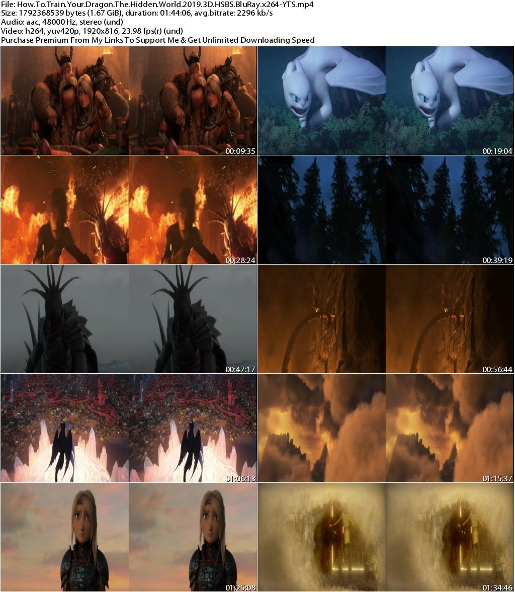 How To Train Your Dragon The Hidden World (2019) 3D HSBS 1080p BluRay x264-YTS