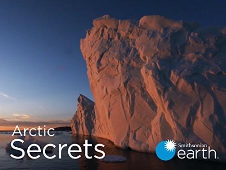 Arctic Secrets S02E02 Yukon Wild 480p x264-mSD