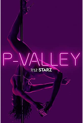 P-Valley S01E01 WEBRip x264-ION10