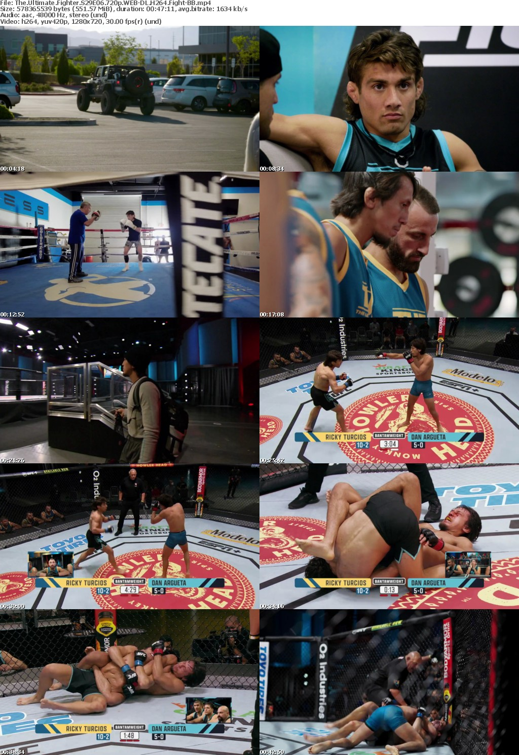 The Ultimate Fighter S29E06 720p WEB-DL H264 Fight-BB