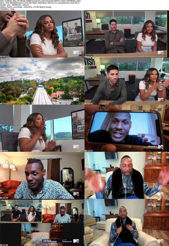 Catfish The TV Show S08E42 Aaron and Treyvon HDTV x264-CRiMSON