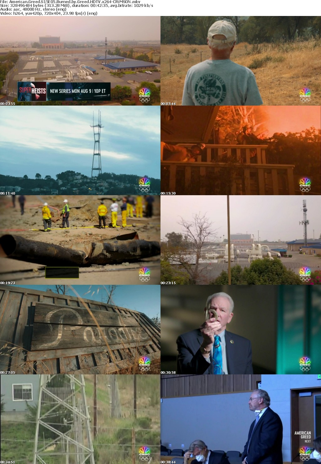 American Greed S15E05 Burned by Greed HDTV x264-CRiMSON