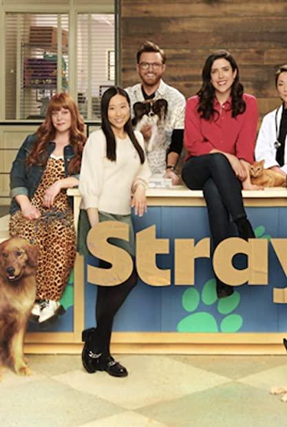 Strays S01E06 720p WEBRip x264-BAE